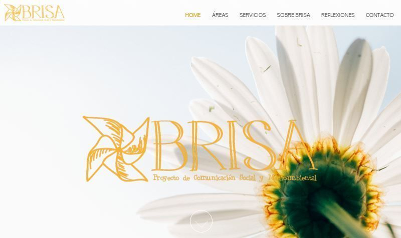 Web de Proyecto Brisa - Home